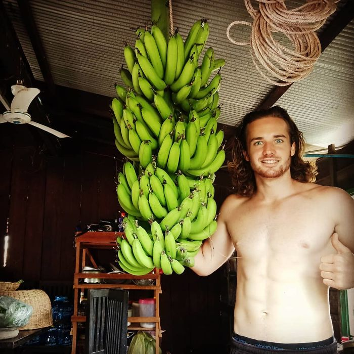 bunch of bananas captured