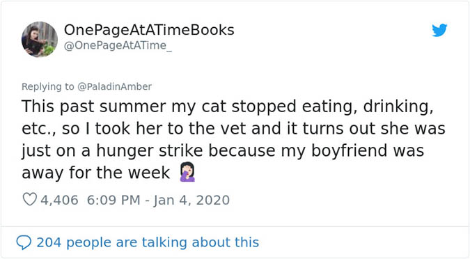 cat goes on hunger strike because owners boyfriend was away