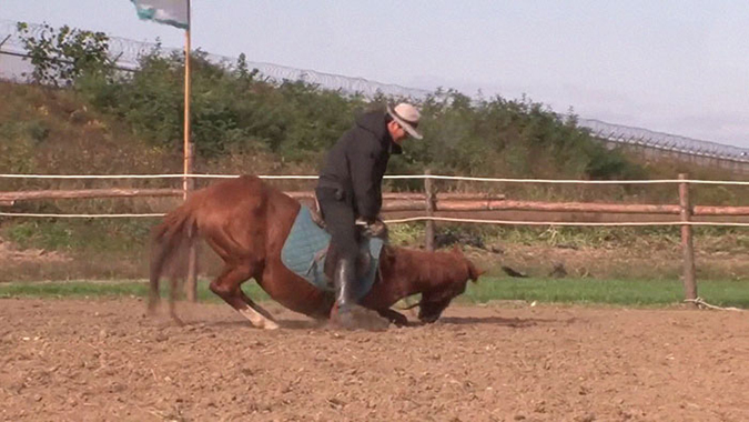 lazy horse's trainer plants a foot on the ground as the dramatic horse collapses