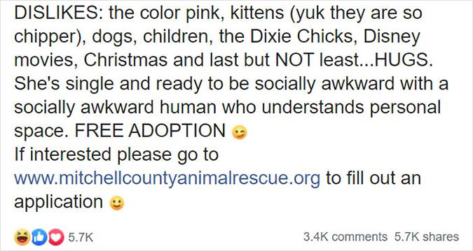 mitchell county rescue profile for worst cat perdita dislikes