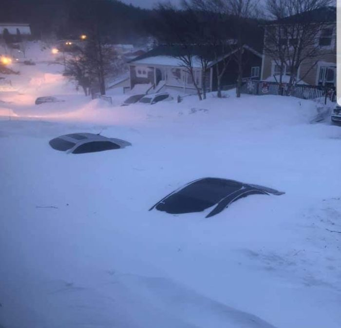 newfoundland blizzard cars buried in snow