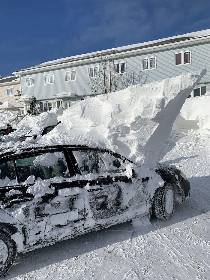 newfoundland blizzard dug up car