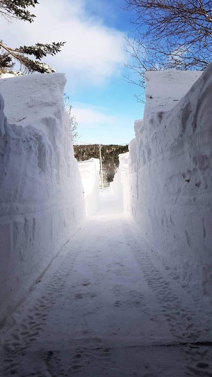 newfoundland blizzard ice wall driveway
