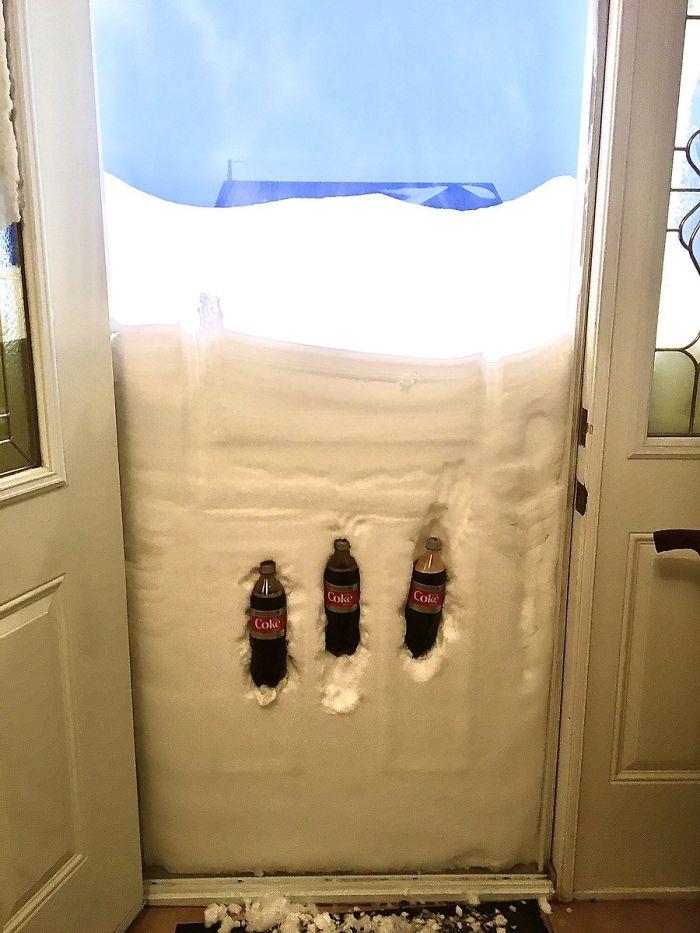 newfoundland blizzard natural refrigerator