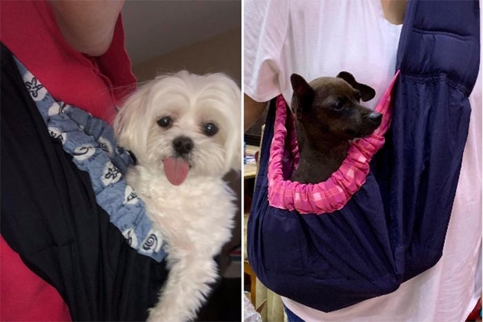 pet sling carrier for dogs
