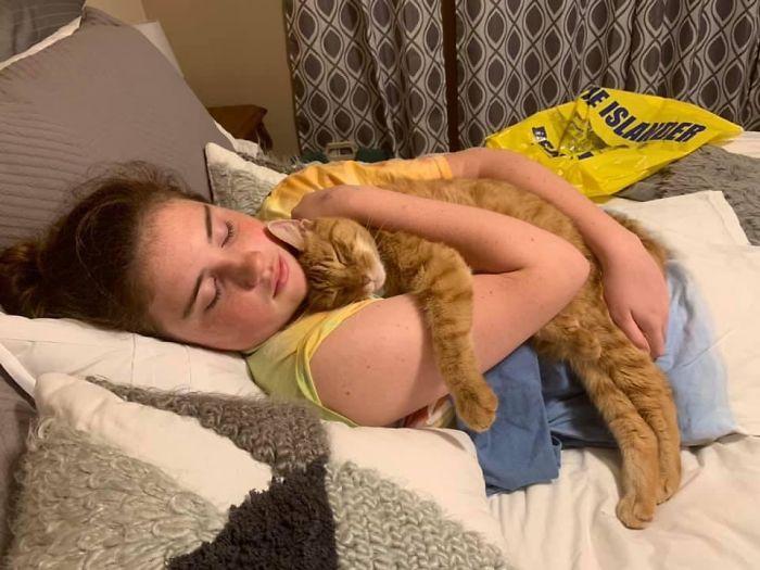 rescue pet cat daughter hug