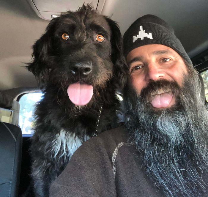 rescue pet dog tongue out