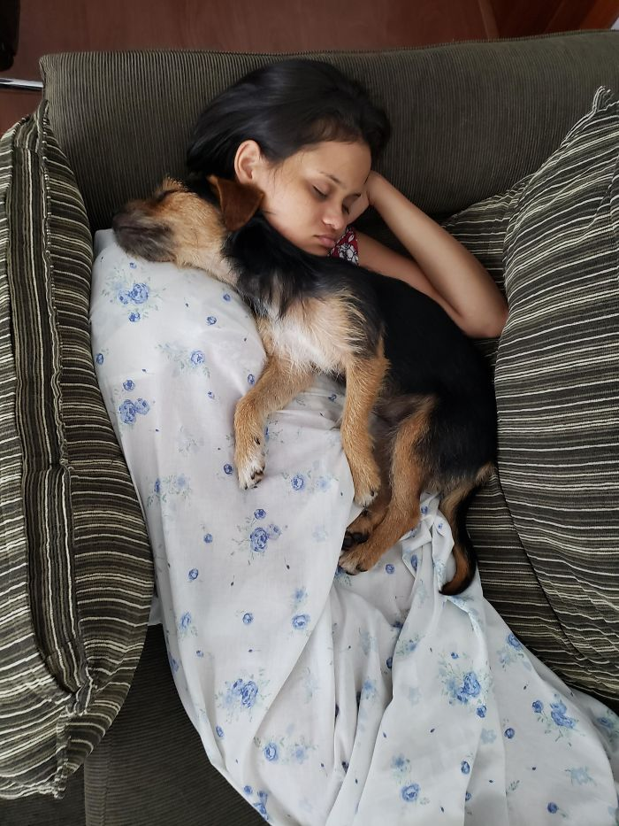 rescue pet puppy sleeping with owner