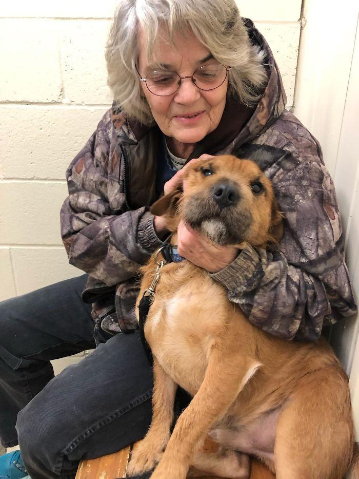 shelter animal adopted grandma bestfriend
