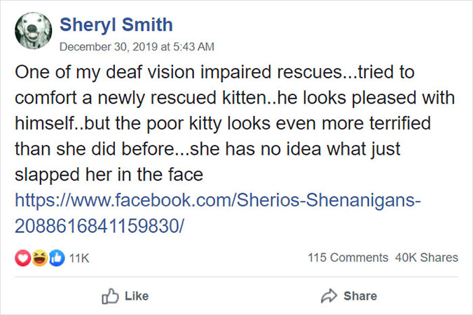 sheryl shares an anecdote about shiro and tiny tolley
