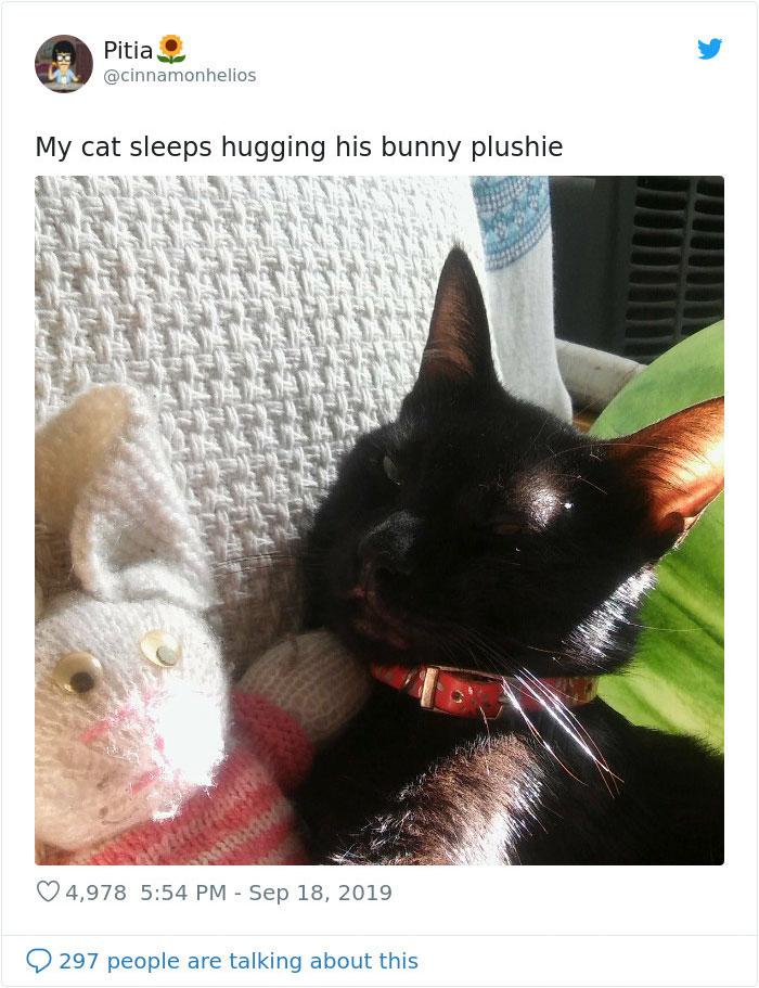 weirdo cats bunny stuffed toy