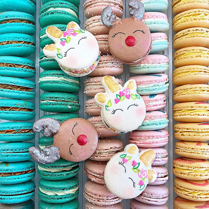 Adorable Animal Macarons