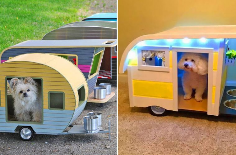 Camper trailer dog beds