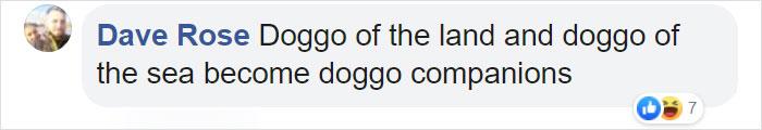 Dave Rose Facebook Comment