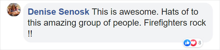 Denise Senosk Facebook Comment on Bushfire Heroes Special Edition Funko Pop Figure