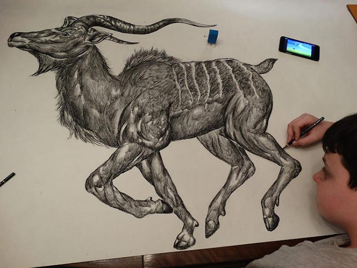 Dusan draws animals with incredible detail from memory