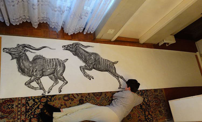 Dusan draws his animal drawings on a 10-meter-long roll of paper