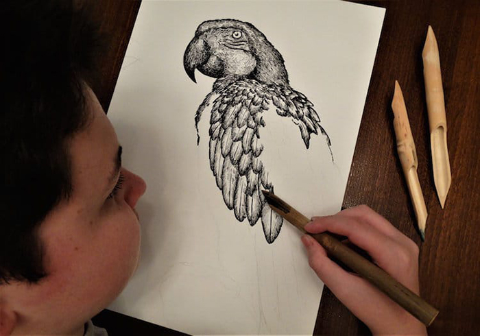Dusan meticulously detailing a parrot