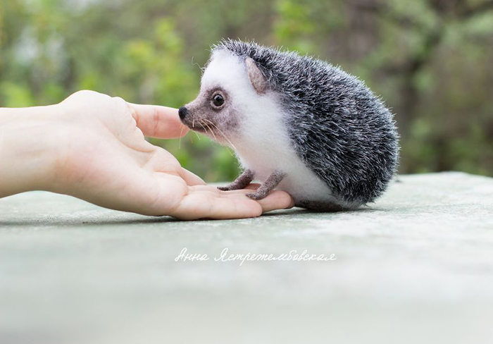 Felted Wool Hedgehog Toy by Anna Yastrezhembovskaya