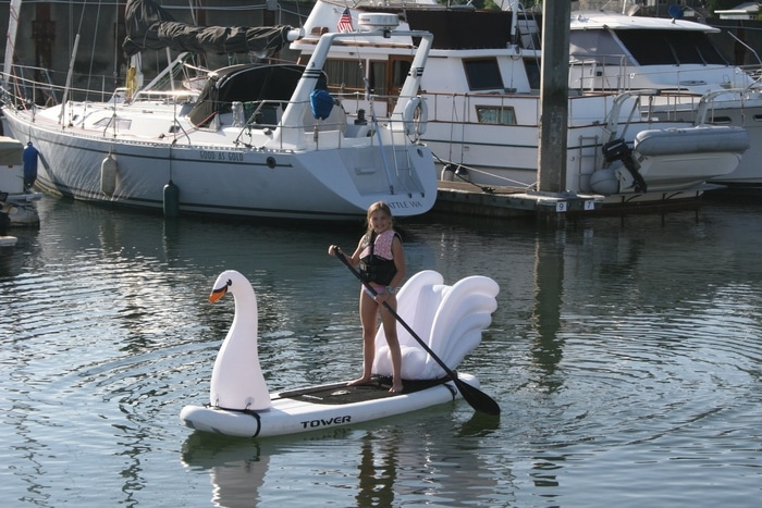 Girl on a Swan Paddleboard