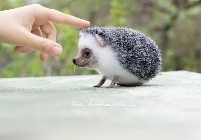 Handmade Felted Wool Hedgehog Toy by Anna Yastrezhembovskaya