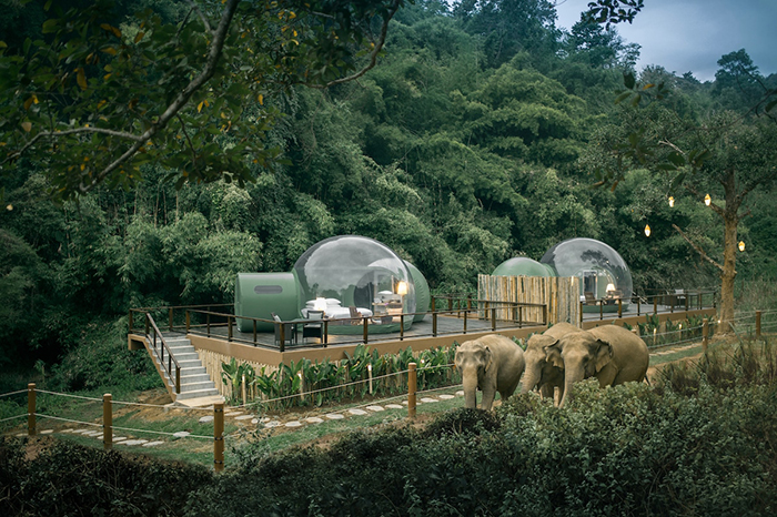 Jungle Bubbles at Anantara Golden Triangle Elephant Camp Resort