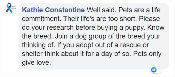 Kathie Constantine Facebook Comment