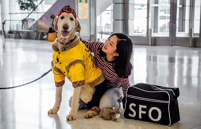 Lady Hugging a Dog Member of the Wag Brigade