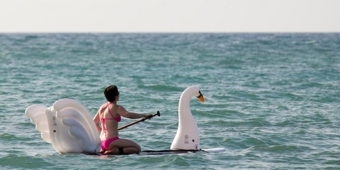 Lady on a Swan Paddleboard