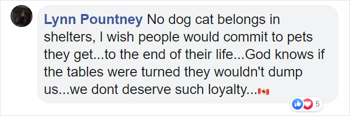 Lynn Pountney Facebook Comment