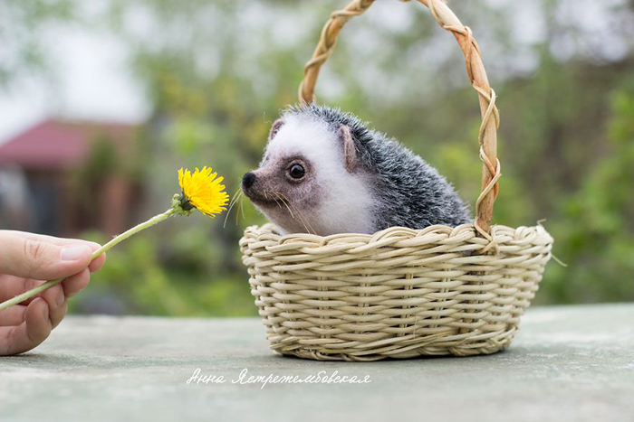 Realistic Felted Wool Hedgehog Toy