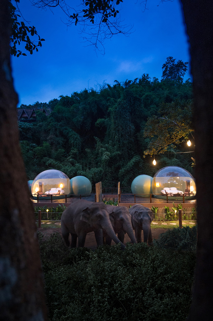 Special Outdoor Accommodation at Anantara Golden Triangle Elephant Camp Resort