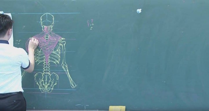 Taiwanese Instructor Human Muscular System Chalkboard Drawing