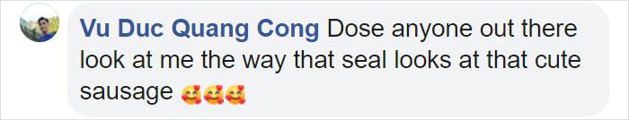 Vu Duc Quang Cong Facebook Comment