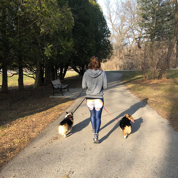 close-fitting tights for dog lovers