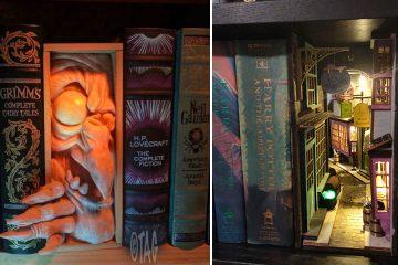 creative bookshelf inserts