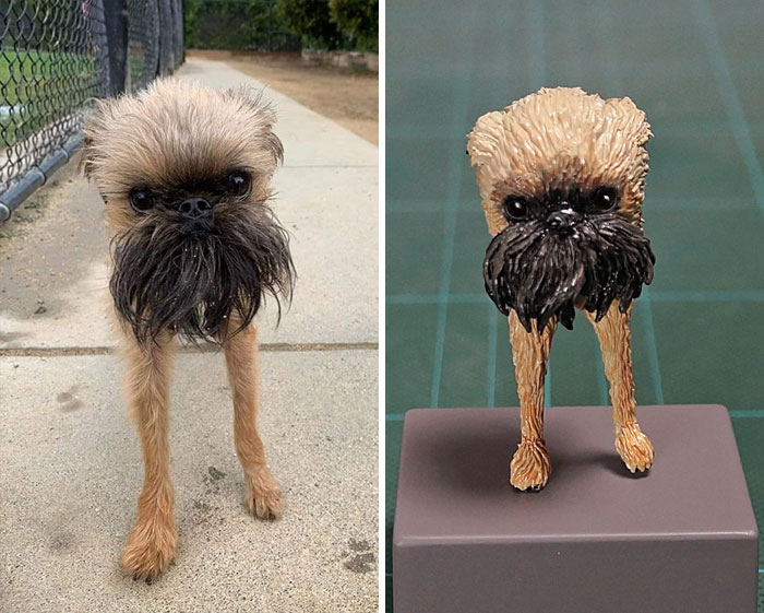 funny animal moment turned 3d beardy dog