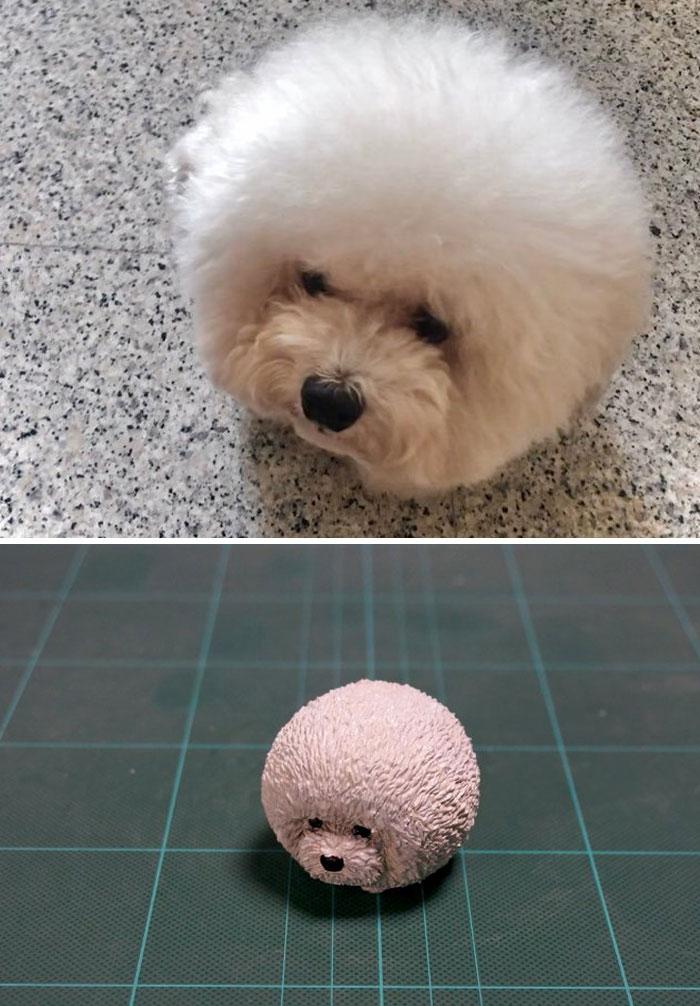 funny animal moment turned 3d fluffball dog