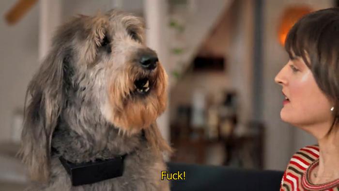 internal speaker curse words pets
