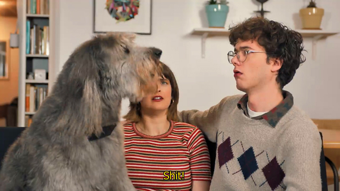cursing dog collar internal speaker