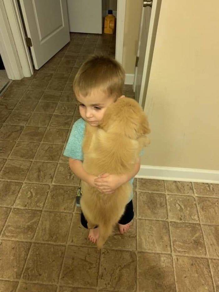 little boy puppy bestfriend
