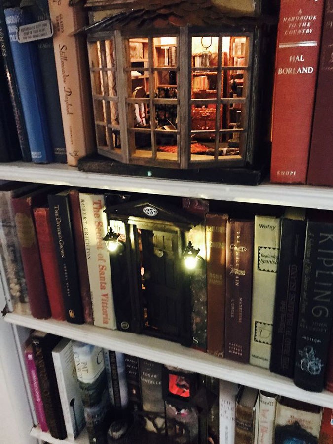 magical bookshop on your bookshelf