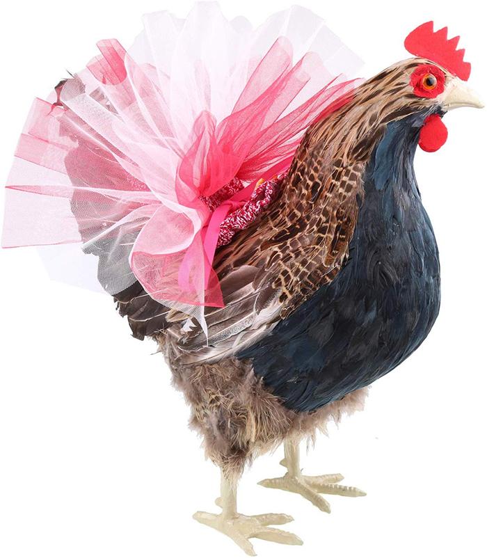 pink chicken tutus