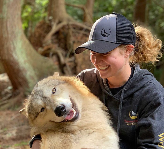 predators of the heart staff playing with a wolf