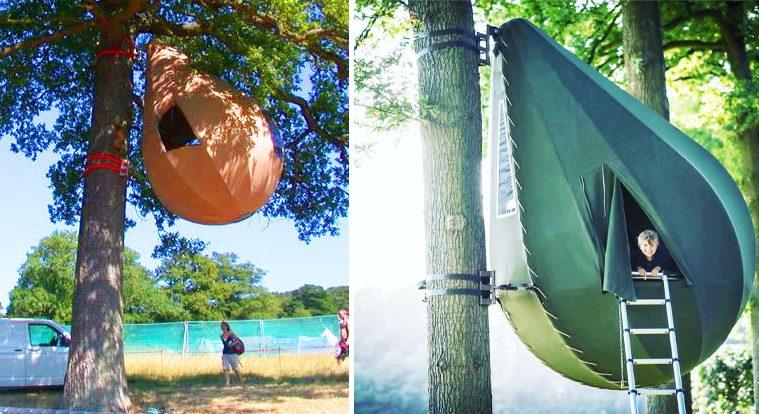 raindrop tree tent