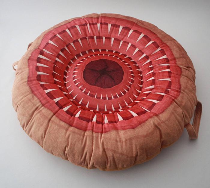 sarlacc pillow pit