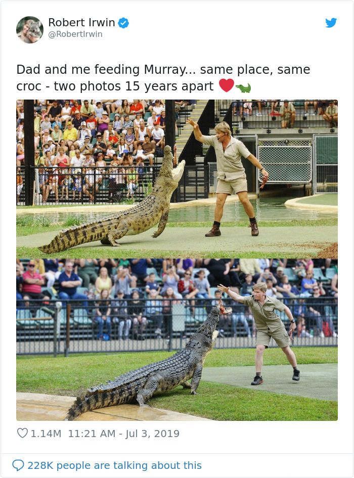 steve and robert irwin feeding crocodile