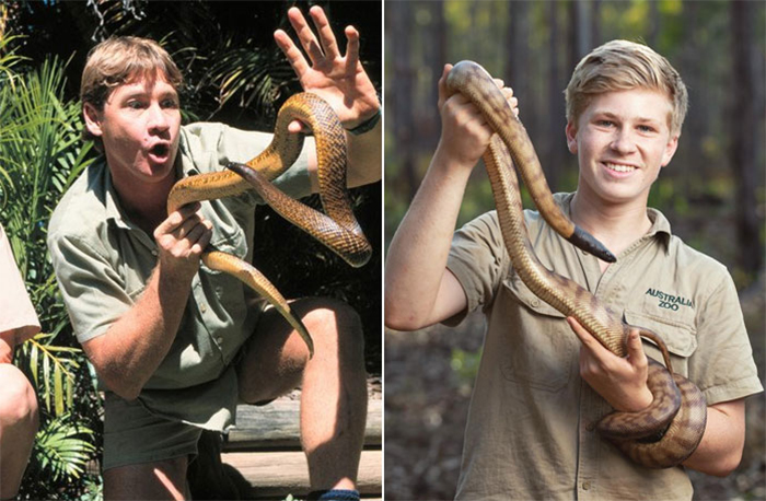 steve and robert irwin snake