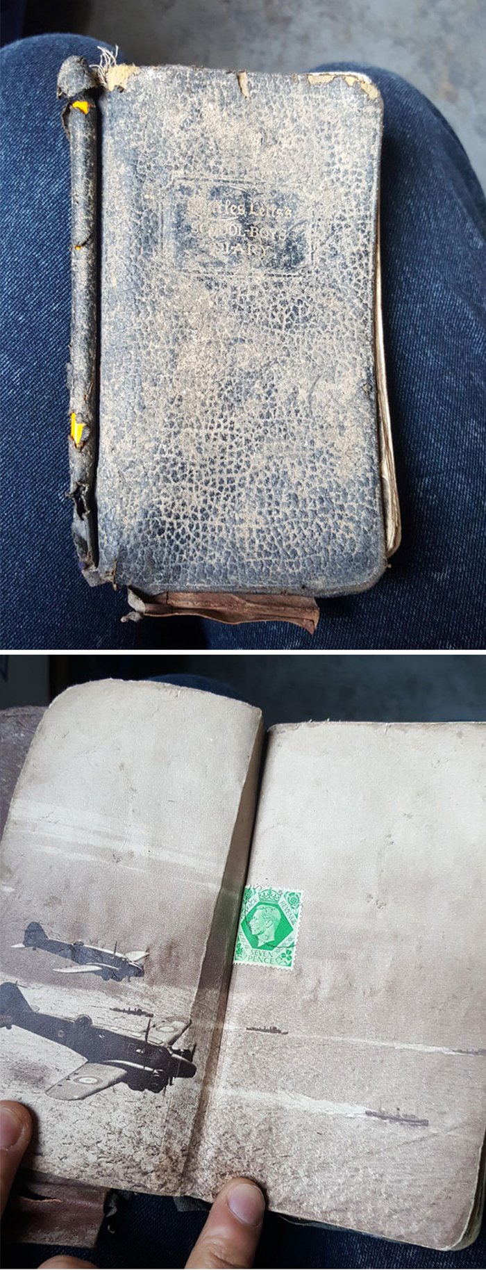 strange things discovery 1941 diary