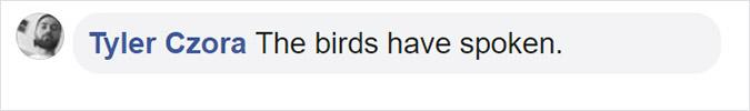 the birds have spoken
